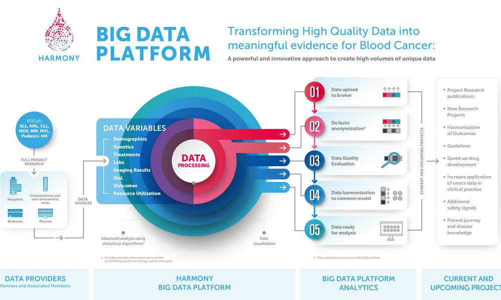 Presenting the HARMONY Big Data Platform Infographic