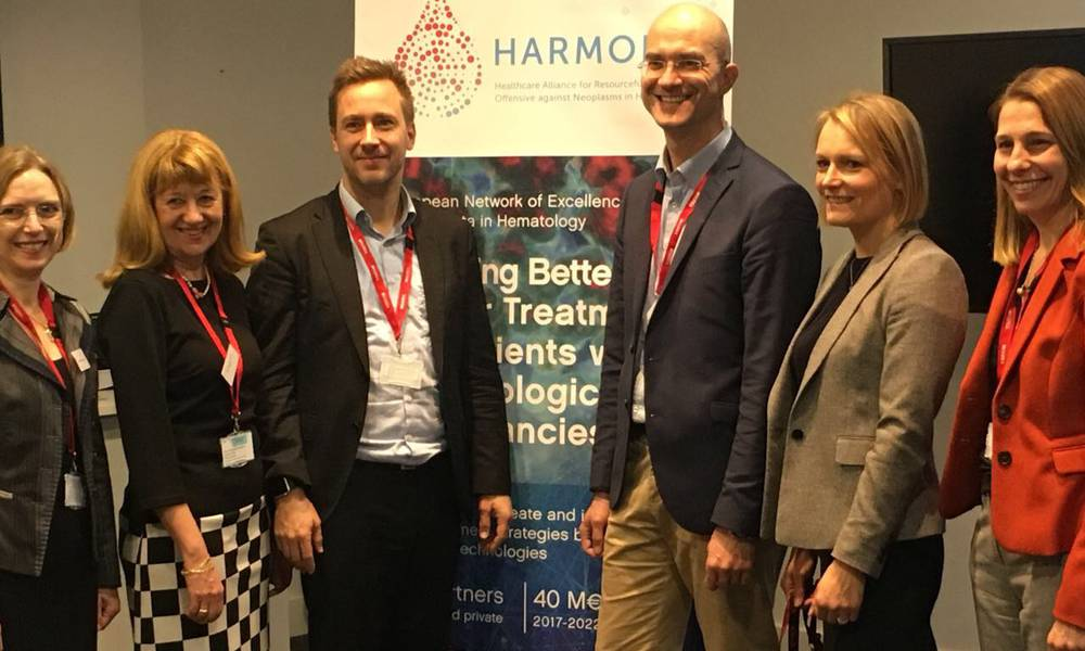 HARMONY Work Packages 2 & 6 Leadership in action in London, during Workshop: Meaningful Outcomes for HMs