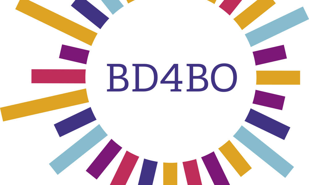 HARMONY Executive Committee Members will present at the first BD4BO Group Meeting in 2018