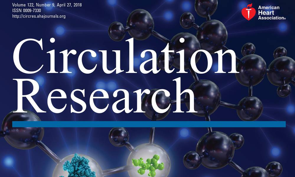 Read the article in Circulation Research: Omics, Big Data, and Precision Medicine in Cardiovascular Sciences