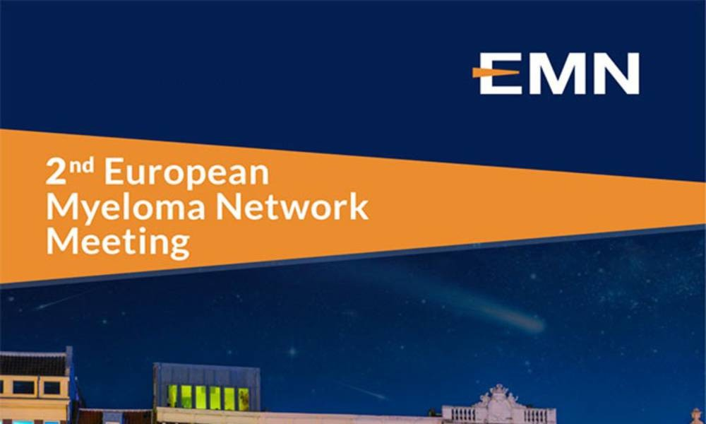 Joining forces to improve the treatment of myeloma: HARMONY participating in the second European Myeloma Network Meeting