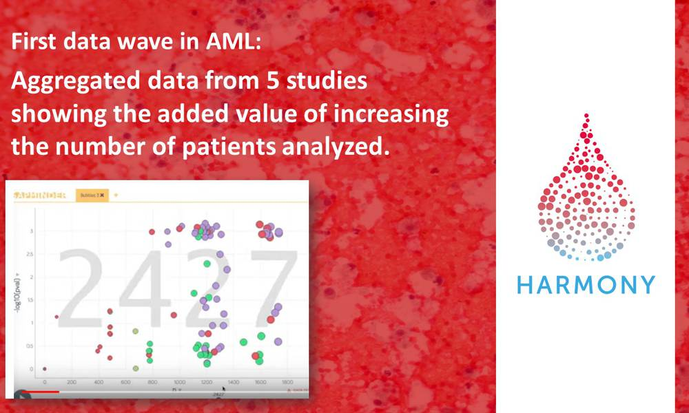 Unique video first data wave in AML: Aggregated data from 5 studies showing the added value of increasing the number of patients analyzed